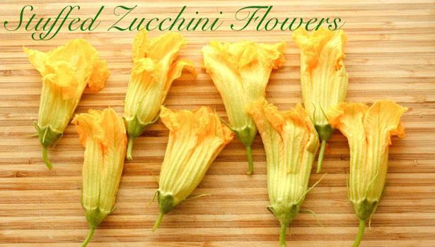 zucchini blossoms_cover